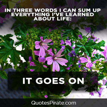 in three words i can sum up everything cute life quotes