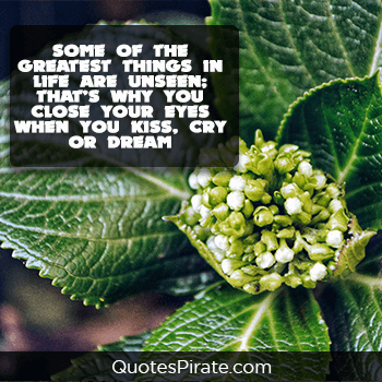 some of the greatest things in life are unseen cute life quotes