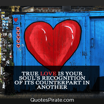 true love is your souls recognition cute couples quote