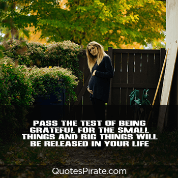 pass the test of being grateful for the small things cool quotes