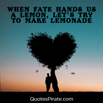when fate hands us a lemon lets try to make lemonade cool quotes